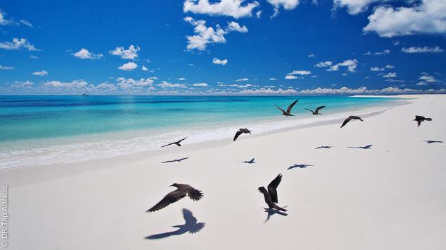 Séjours plongée aux Seychelles