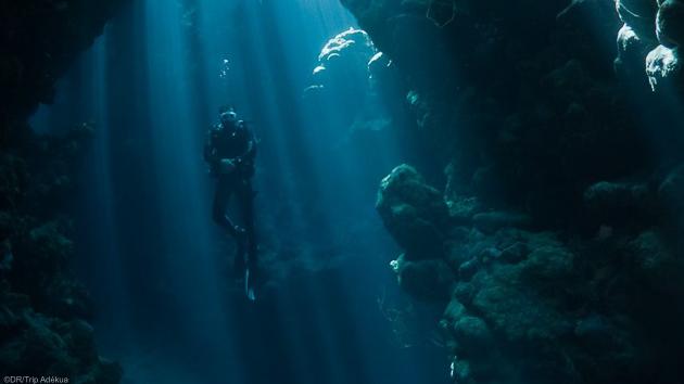 Votre séjour plongée en Egypte pour découvrir la beauté des fonds de la mer Rouge