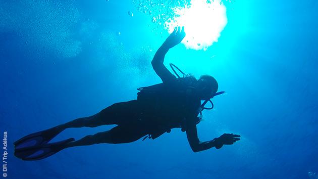 Des plongées et du farniente au programme de vos vacances