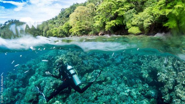 Séjour plongée à Rapopo en Papouasie Nouvelle Guinée