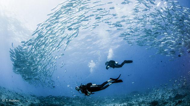 Séjour plongée à Tahiti en Polynésie française