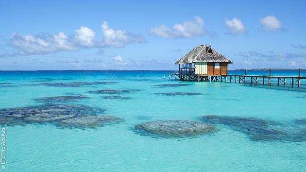 Séjour plongée à Tahiti en Polynésie