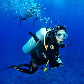 Votre agent de voyage plongée dive trip adékua