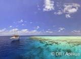 Les Maldives au rythme de navigations paisibles, des plongées et des visites - voyages adékua