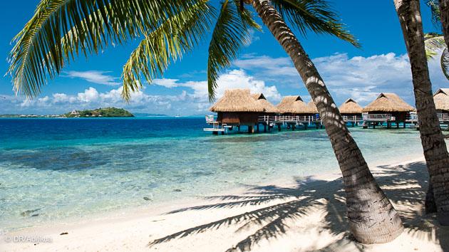 logé comme un prince de la plongée à Bora Bora