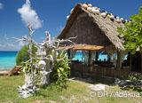 Jour 16 à 19 : Le mur de requins gris de Fakarava sud - voyages adékua