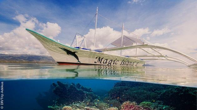 Plateaux corallienrs colorés, eaux cristallines et plongées accessibles dès le niveau 1 pour ce séjour aux Philippines