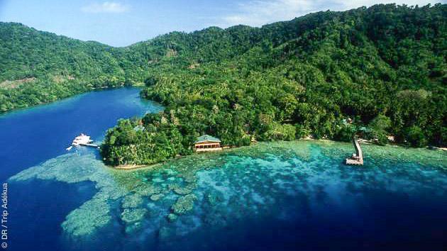 Séjour plongée exceptionnel, à dates fixes, en Papouasie Nouvelle Guinée avec croisière et bungalow de luxe