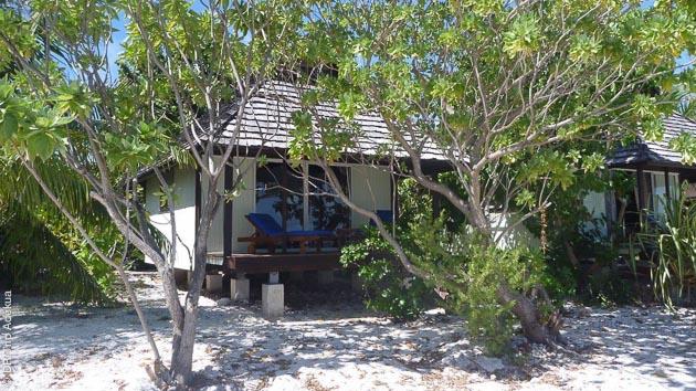 Bungalow sur la plage ou sur pilotis : vos hébergements lors de ce séjour plongée à Tahiti, Rangiroa et Fakarava vous séduiront