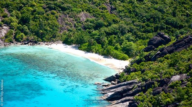 Les Seychelles terre et mer, un concentré de beauté pour les plongeurs en croisière !