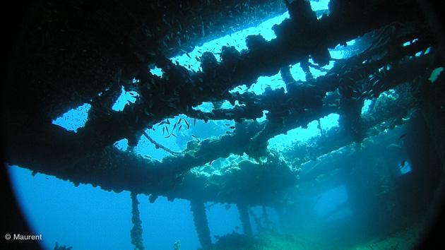 croisière plongée au soudan