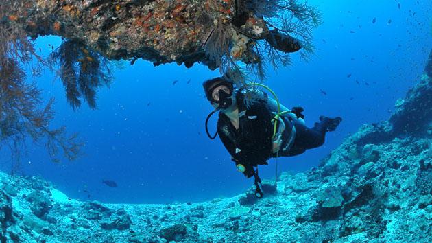 Votre croisière plongée de rêve dans l'archipel des Maldives