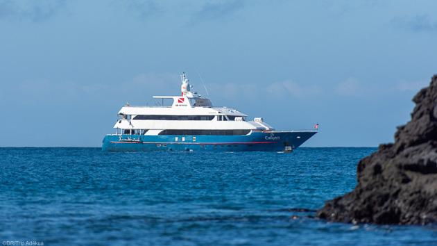 Votre bateau tout confort pour une croisière unique aux Galapagos