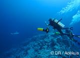 Le paradis de plongeurs : un centre de plongée flottant et ultramoderne - voyages adékua