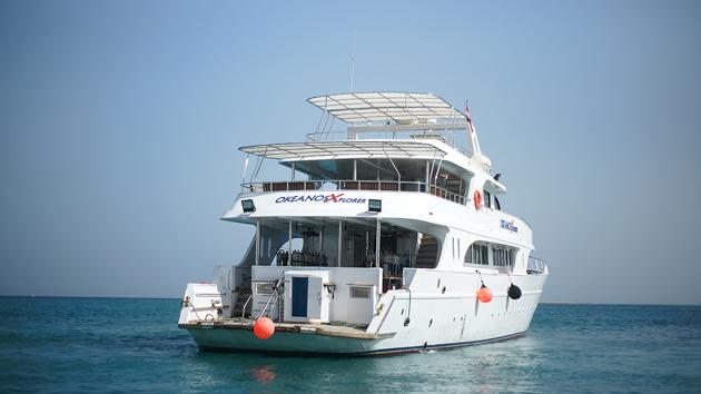 Un bateau de croisière plongée tout confort pour découvrir la mer Rouge