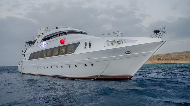 Un séjour plongée de rêve à la découverte des fonds de la mer Rouge