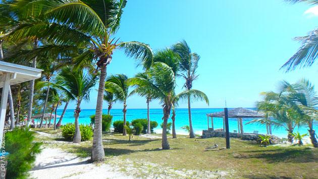 Lors ce de séjour aux Bahamas, vous êtes logés dans un resort familial, pour profiter au maximum de vos vacances plongée