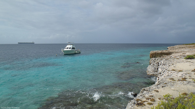 Découvrez le tombant de Bonaire : 60 km de fonds marins