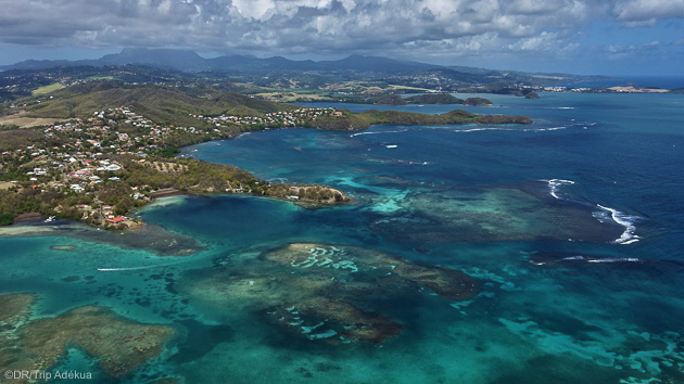 Découvrez la beauté de l'île de la Martinique aux Antilles