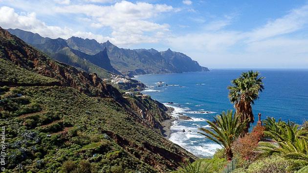 Vous effectuez votre formation plongée à Tenerife dans un cadre enchanteur