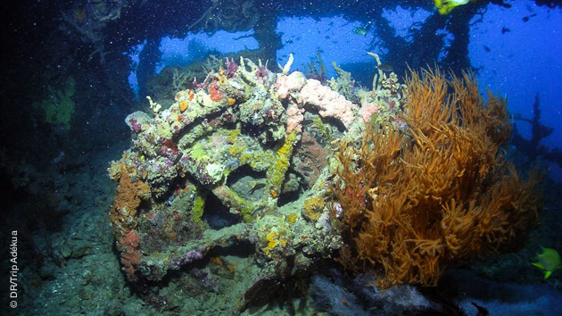 plongée sur épave aux Philippines