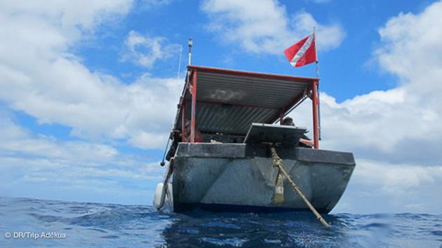 votre voyage plongée à la Dominique aux Antilles