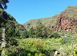 Des vacances plongée à Gran Canaria mais pas que… - voyages adékua