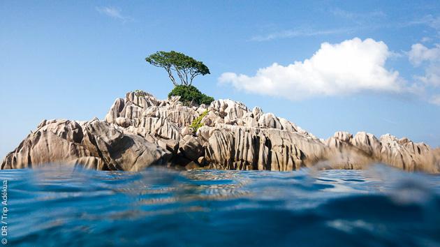 avis sur mon voyage plongée aux Seychelles