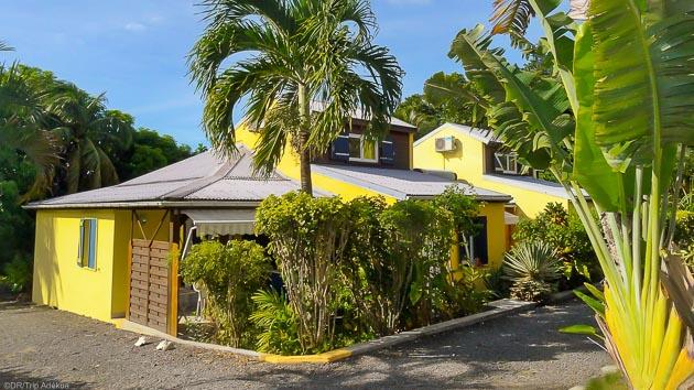Un séjour plongée avec immersions et hébergement en Guadeloupe