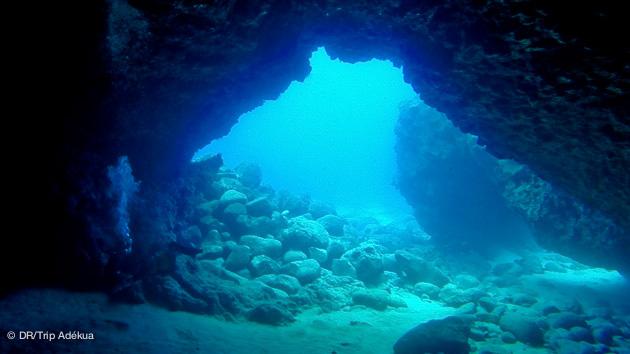 Découvrez les grottes des fonds marins des Canaries