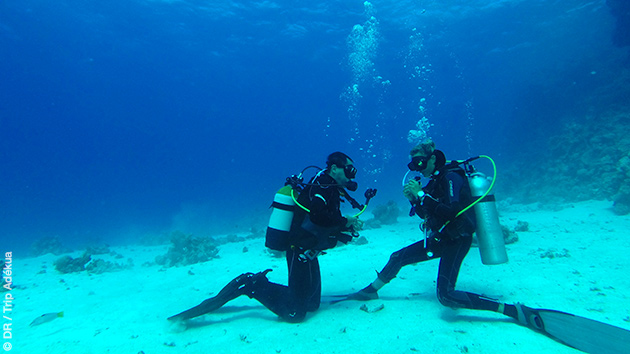 Découverte des fonds sous-marins de la Mer Rouge avec ce séjour plongée à Safaga