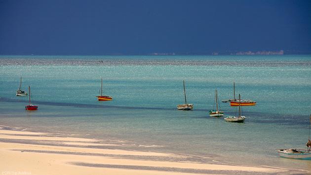 Entre plongée et safari à la découverte du Mozambique