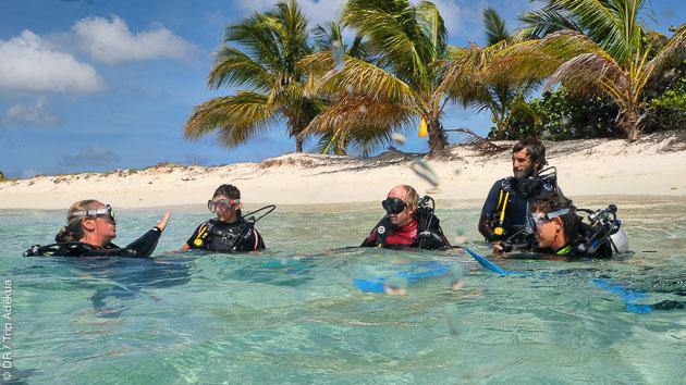 Découvrez les eaux chaudes des Caraïbes pendant des vacances plongée