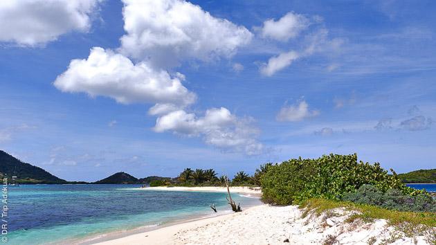 Plages de rêves et fonds marins préservés aux Caraïbes