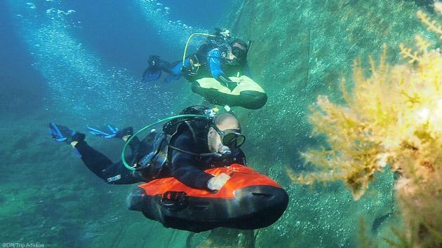 Découvrez les plus beaux fonds de l'Océan Indien