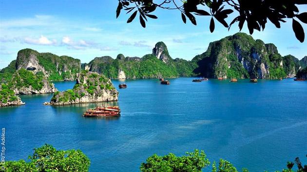 Un cadre de rêve pour plonger et se détendre : l'île de Phu Quoc au Vietnam
