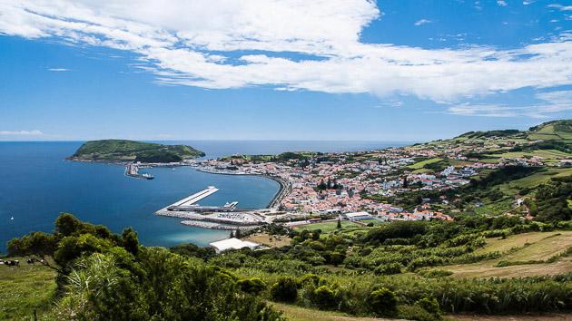 Découvrez la faune et la flore sous-marine des Açores