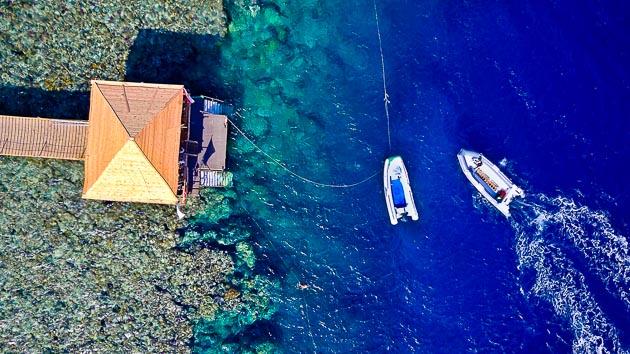 Un séjour de rêve pour plonger en mer Rouge