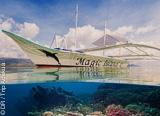 Vos plongées au coeur du Triangle de corail aux Philippines - voyages adékua