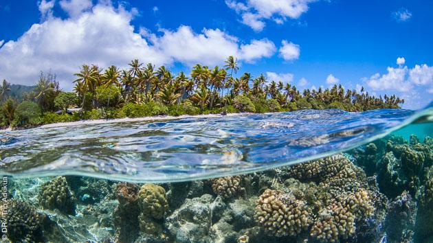 Entre Tahiti et Bora Bora, un séjour snorkeling de rêve