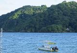 A la découverte des merveilles sous-marines de Tobago - voyages adékua