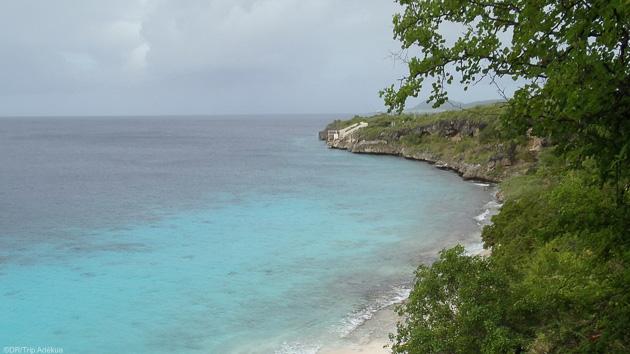 Bonaire : le paradis des plongeurs