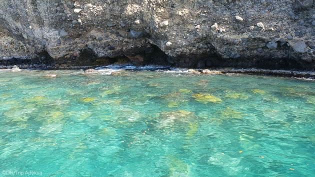 Découvrez les eaux translucides de l'île de la Martinique