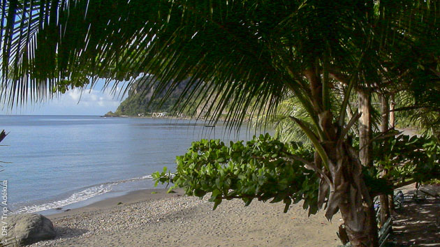 Votre séjour vous permet de découvrir les plus beaux sites de la Dominique au gré de excursions proposées