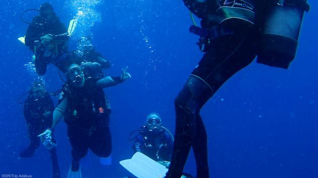 Plongez dans l'Océan Indien et découvrez l'île Maurice