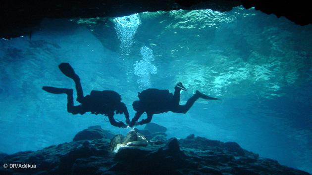 Découvrez les plongées dans les cenotes au coeur de la jungle mexicaine