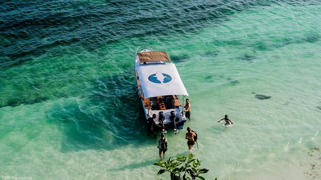 Plongez en toute sécurité avec nos intructeurs sur l'île de Sulawesi