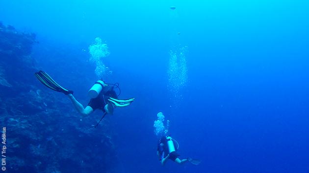 Un séjour spécial couple pour s'initier à la plongée sous-marine à Cat Island, aux Bahamas