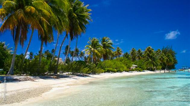 Un cadre de rêve pour ce séjour plongée en Polynésie, avec le vol au départ de Paris