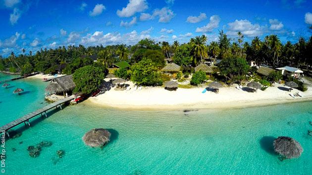 Un magnifique séjour plongée vous attend en Polynésie Française, avec des plages magnifiques et un hébergement soigné, le tout avec le vol !